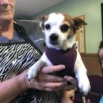 Lola getting her nails clipped by the lovely ladies of Irwin Animal Clinic in Ocilla, Georgia.